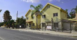 Nice yellow houses